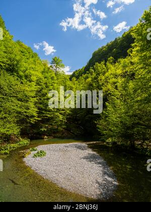 Zeleni vir near Skrad in Croatia Europe Green forest nature natural beauty small lake almost dried - Stock Photo