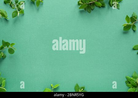 Creative layout made of green leaves, spring twigs on trendy green or mint background. Green leaves frame, flat lay, copy space. Summer or spring, eco - Stock Photo