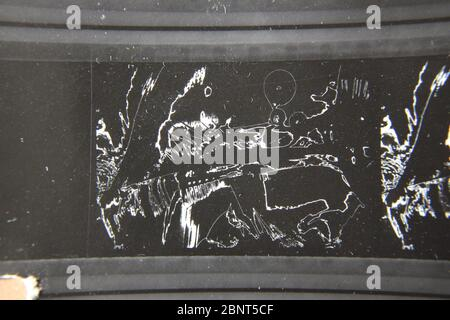 Fine 70s vintage contact print black and white extreme photography of an abstract - Stock Photo