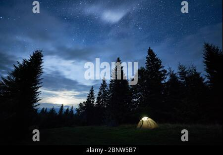 Fantastic view of night starry sky over meadow. Stunning scenery of tourist illuminated tent in forest with coniferous trees under blue sky with stars. Concept of travelling, hiking and camping. - Stock Photo