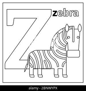Coloring page or card for kids with English animals zoo alphabet. Zebra, letter Z vector illustration