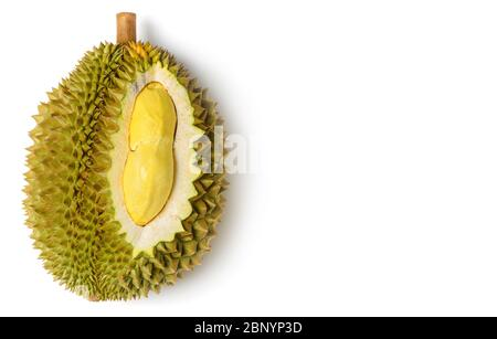 King  of fruits, Yellow durian in side Mon Thong durian fruit isolated on white background, summer fruits, popular and expensive of all Thai fruits. - Stock Photo