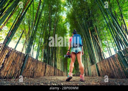 Active lifestyle travel woman with backpack and camera in hand explore Bamboo Forest in Thailand. Popular travel destinations in Asia.
