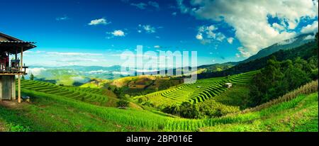 Panorama beautiful rice terraces against the backdrop of scenic mountain in fog. Popular famous attraction and travel destination in Asia. - Stock Photo