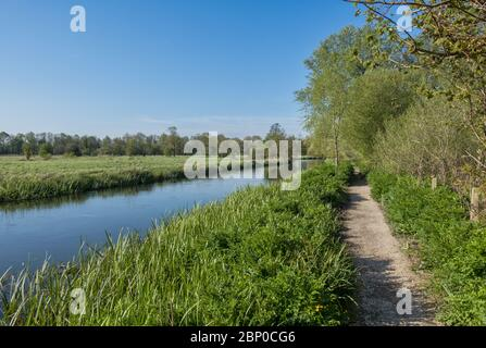 The Itchen Way between Eastleigh and Southampton. A long-distance footpath following the River Itchen in Hampshire, England, UK - Stock Photo