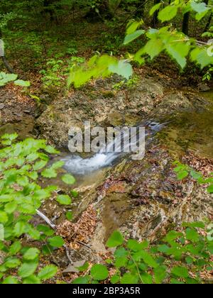 Brook flowing water stunning Spring Green nature color in forest flow captured in long exposure - Stock Photo
