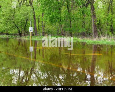 River Forest, Illinois, USA. 18th May 2020. Floodwaters from the Des Plaines River fill Chicago Avenue where it passes through Thatcher Woods Forest Preserve. - Stock Photo