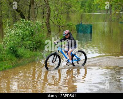 River Forest, Illinois, USA. 18th May 2020. A boy rides his bike through a shallow area of Des Plaines River floodwaters in Thatcher Woods Forest Preserve near this western suburb of Chicago. - Stock Photo