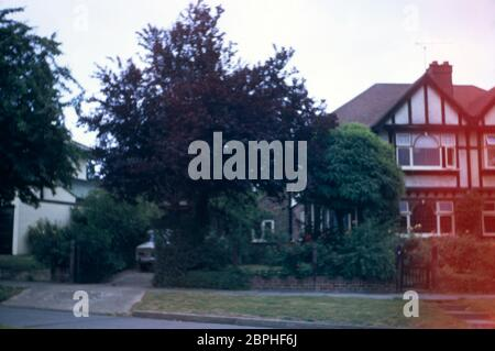 A semi detached family home in mock Tudor style built in 1937, with attractive trees, roases and shrubs in the front garden and an beige Alfa Romeo Giulia Super parked in the drive at Hatch End Park Estate, Milne Feild, Middlesex, UK - Stock Photo
