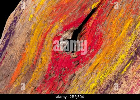 closeup shot of a colorful wooden surface in black back