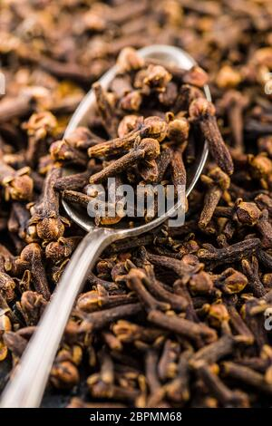 Carnation, dried clove spice in spoon.