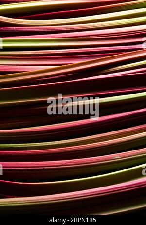 Close-up on a multitude of rhubarb stalks. Vertical shot with rhubarb. Freshly harvested vegetables - Stock Photo