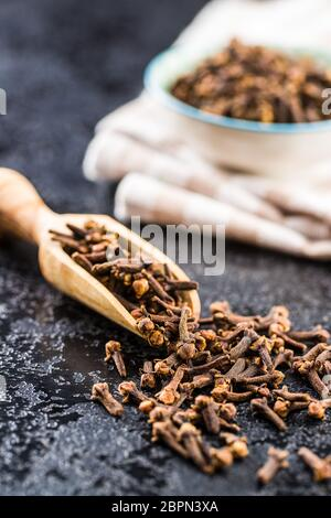 Carnation, dried clove spice in scoop.