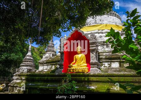 Wat Buppharam temple pagoda and golden buddha, Chiang Mai, Thailand - Stock Photo