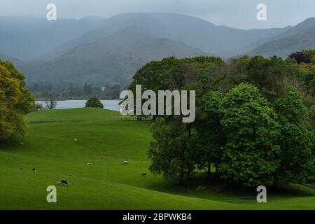 Wray castle grounds, Lake District, United Kingdom - May 9, 2019 : View from the Wray castle to the shoreline of lake Windermere. - Stock Photo