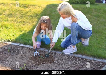 Mother and daughter plant a plant in the ground. y
