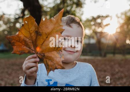 Portrait of young boy holding brown leaf. Cute child holding brown leaf in front of face and looking at camera. - Stock Photo