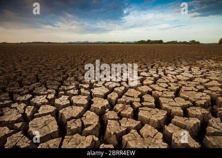 Drought in the lake of Cienaga de las Macanas, El Rincon, Herrera province, Republic of Panama.
