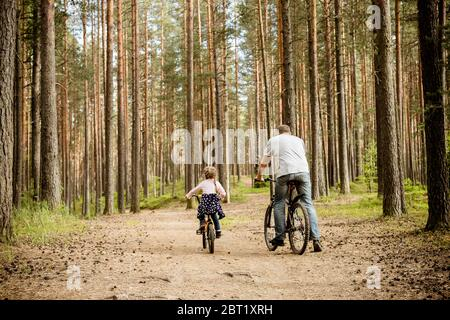 back view of father and daughter riding bicycles around forest.Young family in summer cycling in park.The theme family sports outdoor recreation