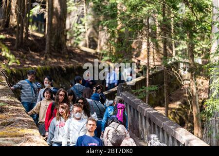 Nikko, Japan - April 5, 2019: People walking on stone path trail steep up through forest on steps stairs down in Tochigi leading to Toshogu temple Oku - Stock Photo
