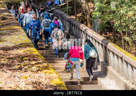 Nikko, Japan - April 5, 2019: Many people walking on stone path trail up through forest on steps stairs in Tochigi leading to Toshogu temple Okumiya H - Stock Photo
