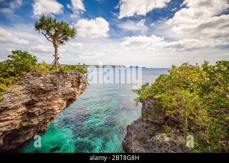 Scenic landscape with a single tree on top of a curved cliff with beautiful turquoise waters, blue sky and clouds on the Island of Mare, New Caledonia