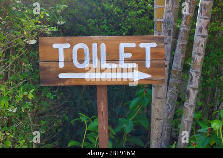 This unique photo shows a wooden sign in nature. Toilet is written on the sign. - Stock Photo