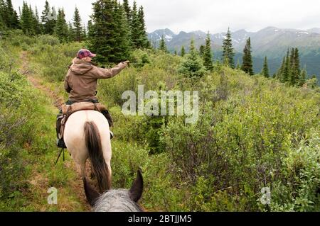 A female wilderness guide leading a horseback riding trip through Spatsizi Plateau Wilderness Provincial Park in northern British Columbia, Canada. - Stock Photo