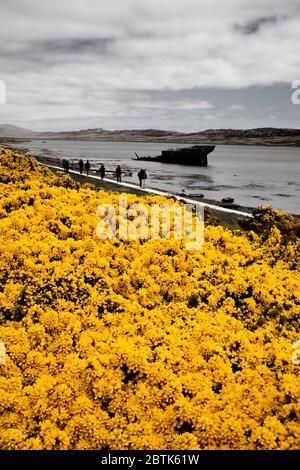 'Jhelum' Shipwreck on Ross Road West in Port Stanley, Falkland Islands (Islas Malvinas), United Kingdom, South America - Stock Photo