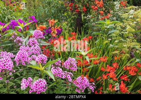 Mixed borders at Great Dixter garden, Northiam, East Sussex - Stock Photo
