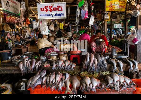 Fish market, Myitkyina, Kachin state, Myanmar (Burma), Asia Stock Photo