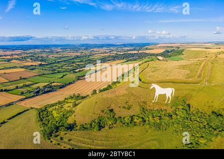 Aerial view of the famous White Horse below Bratton Camp, an Iron Age hillfort near Westbury, Wiltshire, England, United Kingdom, Europe - Stock Photo