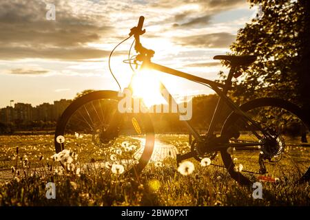 Sports bike in the field at sunset. - Stock Photo