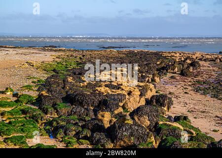 View of the Solent on a cool sunny autumn afternnoon with Portsmouth in the distance and seaweed covered rocks in the foreground - Stock Photo