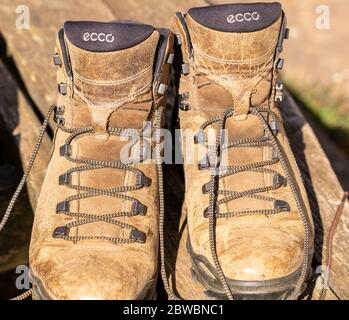 ecco boots old stock