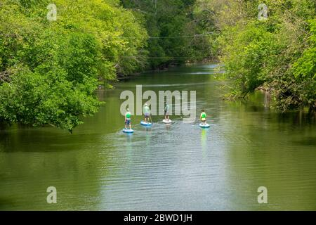 USA Maryland MD Outdoors recreation stand up paddle boarding on Seneca Creek in Poolesville Montgomery County - Stock Photo
