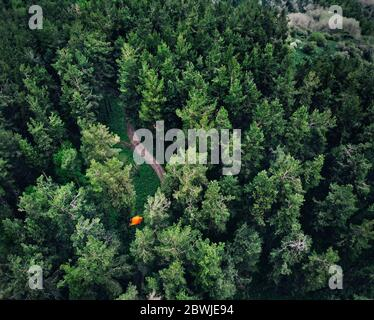 Aerial view of orange tent at forest in the mountains. Photo taken with Drone