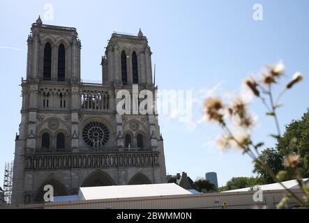 Paris, June 2. 15th Apr, 2019. The Notre-Dame Cathedral is seen in Paris, France, June 2, 2020. The Parvis Notre-Dame was reopened to the public from May 31 after more than one year's close because of the huge fire on April 15, 2019. Credit: Gao Jing/Xinhua/Alamy Live News - Stock Photo