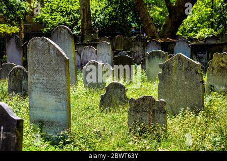 Headstones in tall grass at the Victorian Bunhill Fields Burial Ground, Old Street, London, UK - Stock Photo