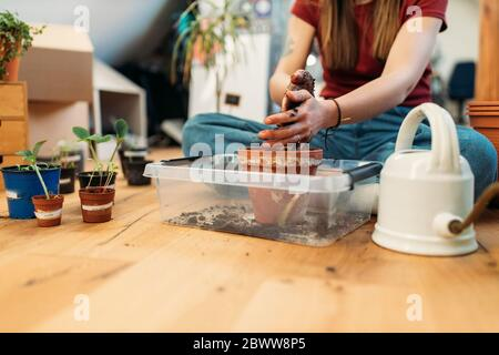 Young woman planting on wooden floor - Stock Photo