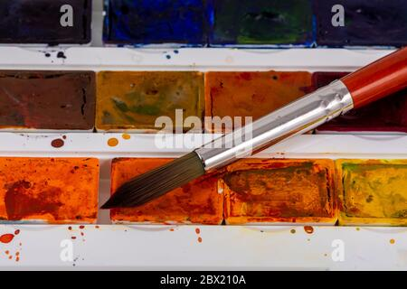 Set of watercolor paints and synthetic brushes for painting. Drawing process.