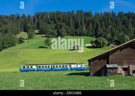 Switzerland, canton of Vaud, country of Enhaut, Goldenpass train, passage in the meadows of Chateau d'Oex, - Stock Photo