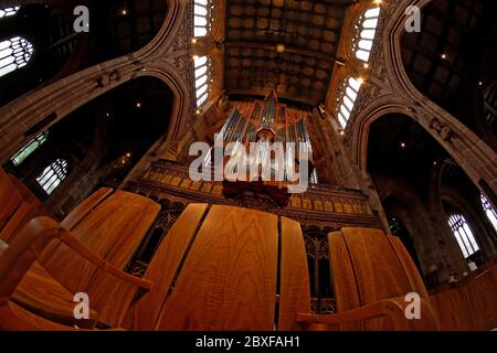 Upward view from the nave of the Manchester Cathedral  organ.The nave has magnificent arched walls and windows and ia carved wooden ceiling