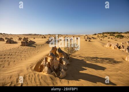Limestone rock formations known as the Pinnacles in the Nambung national park in Western Australia