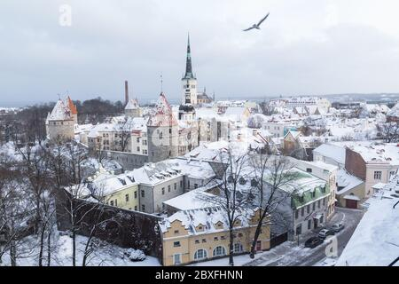 A view of the Tallinn skyline during the winter from the Patkuli Viewing Platform. Lots of snow can be seen. - Stock Photo