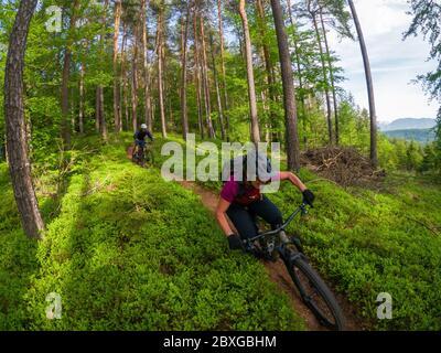 Man and woman mountain biking through the forest, Klagenfurt, Carinthia, Austria
