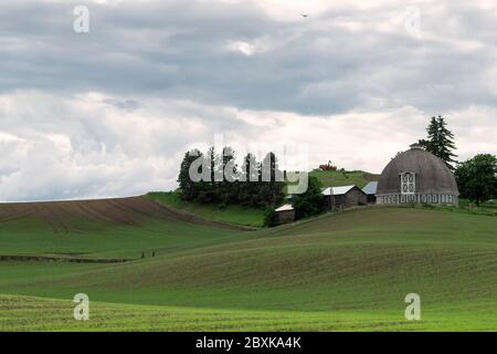 A unique round-shaped barn nestled in the rolling hills of the Palouse region of Washington state - Stock Photo