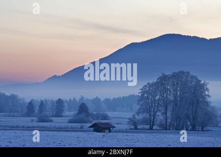 winter morning in bavarian pre-alps, germany