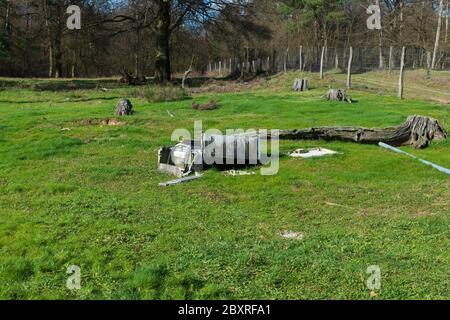 Stromkasten mutwillig zerstört, im Naturschutzgebiet Sanddünen, Baden-Baden Sandweier - Stock Photo
