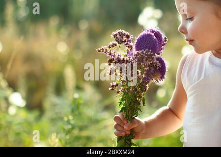 Little cute girl in white dress sniffs a summer bouquet of wildflowers